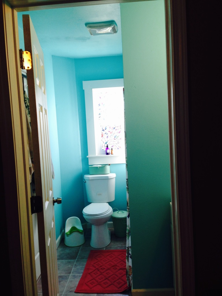 My New Bathroom color!  Woo!  I love it.